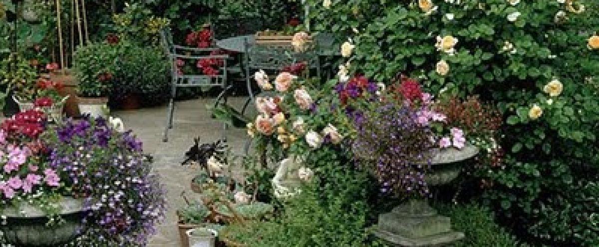 Invitation to the Garden